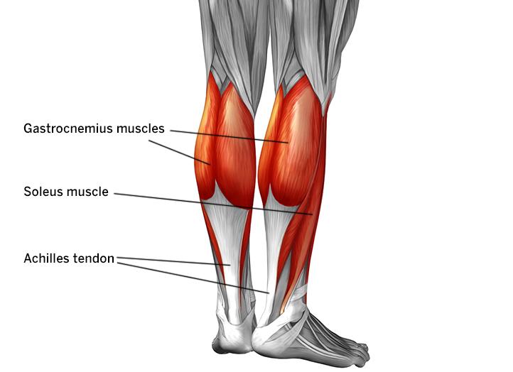 Achilles Tendon Pain Causes Diagnosis And Treatment