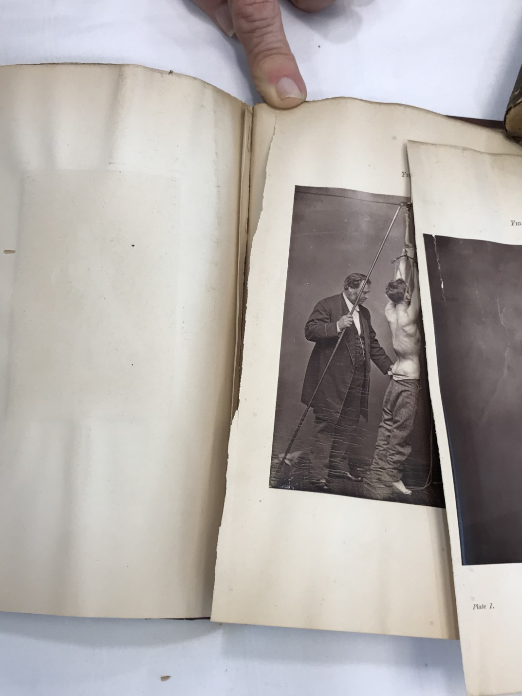 repairs needed to photographic illustrations and torn pages