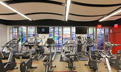 Stationary bikes and treadmills in the sports performance and rehab center