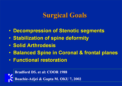 List of surgical goals for adult scoliosis.