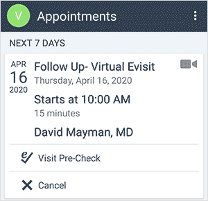 screenshot virtual visit