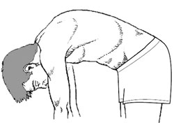 Graphic: Illustration of normal spine bending over