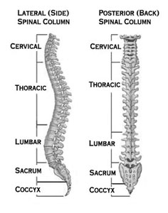 Lumbar Spinal Stenosis - An Overview