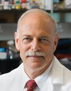 Steven R. Goldring, MD