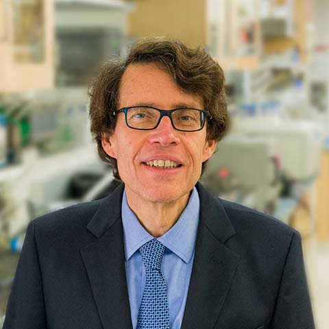 Photo of Lionel Ivashkiv, MD - Chief Scientific Officer