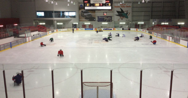 Sled Hockey 610x320