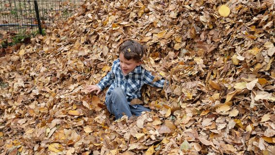 child-playing-in-leaves-Peds-Rehab