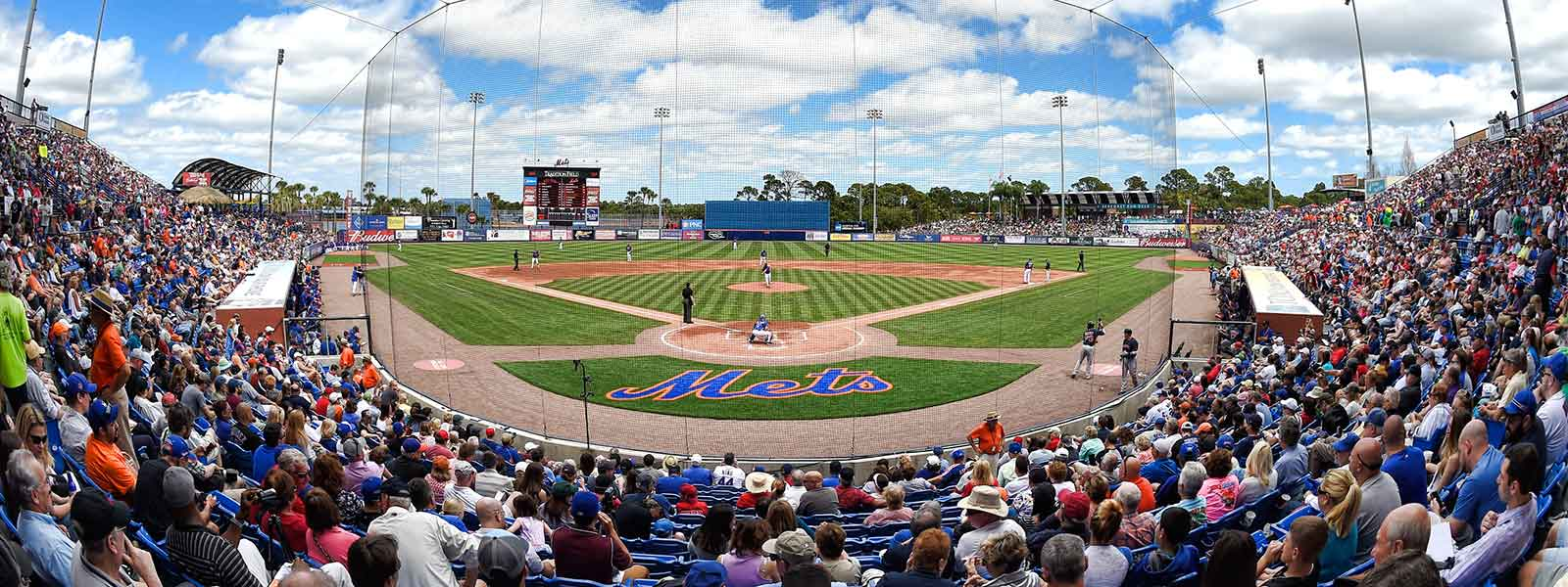 Image - St. Lucie Mets Logo