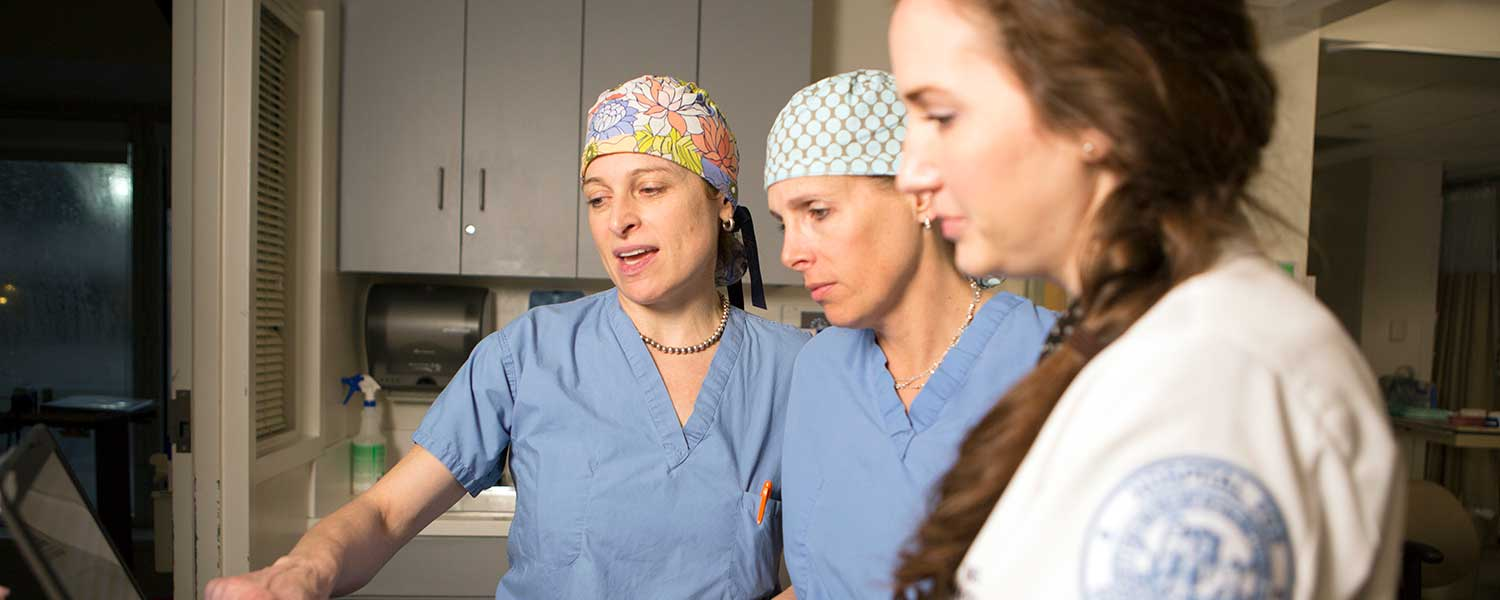 Banner image of Dr. Strickland, Dr. Shubin Stein and Sarah Tryon, NP.